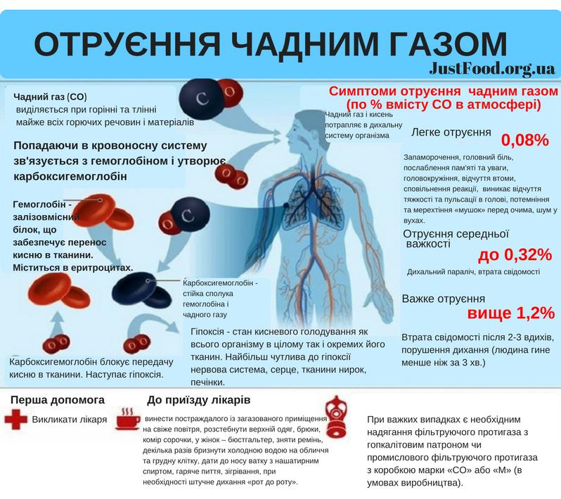 Чадний газ/Отруєння – Не тільки про їжу